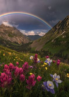 "enantiodromija: "" Mountain Sanctuary by Candace Dyar """