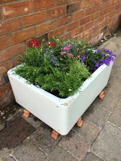Belfast planter with alpines Belfast Sink Garden Feature, Belfast Sink Garden Planter, Butler Sink, Alpine Garden, Irish Cottage, Garden Inspiration, Garden Ideas, Garden Planters, Planter Pots