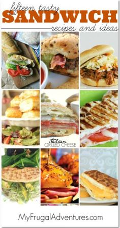 15 delicious sandwich recipes- perfect way to jazz up lunch or hearty enough for quick dinners.