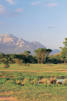 On the Moditlo Private Game Reserve, Vuyani is a prime spot for exploring the African bush. #Jetsetter