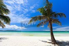 Perfect tropical white sand beach via MuralsYourWay.com