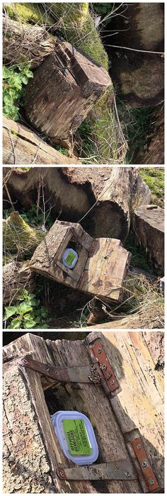 Nicely done fake stump holding a hidden geocache.  (instagram pics by geocachingvimmes stictched together by IBGeocaching) #IBGCp