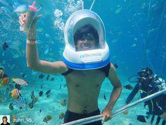 #explorebali  #repost  Regrann from @zuhri_96 -  Hai fish !!! Bali - Lembongan island  book #watersports activities at yoexplore.co.id  #exploreindonesia  #watersports  #seawalk  #travel #traveling #travelasia  #travelingram  #adventure  #adventureindonesia  #underwater  #instatrip  #visitindonesia #yoexplore #jelajah #indonesia #wonderfulindonesia  #paketwisata  #wisatamurah  #jalan2  #jalan2man