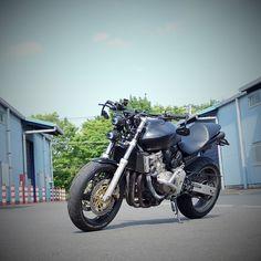 Cb 600, Xs650 Bobber, Honda Motorcycles, Cbr, Hornet, Sport Bikes, Rav4, Dreams, Honda Bikes