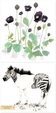 Inspired Artist: Becca Stadtlander - Home - Creature Comforts - daily inspiration, style, diy projects + freebies