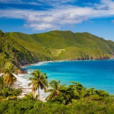 Welcome to St. Croix: This lush island may be the most laid-back in the U.S. Virgin Islands.