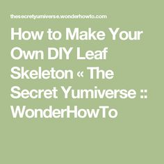 How to Make Your Own DIY Leaf Skeleton « The Secret Yumiverse :: WonderHowTo