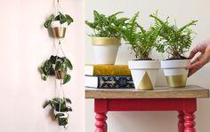 Hanging planters lifestyle collage mini