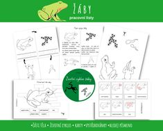 Pracovní listy: Části těla žáby, životní cyklus žáby, třísložkové karty, hledej písmeno, piš vývojové fáze, stříhej a vyráběj. Bullet Journal, Map, Blog, Location Map, Blogging, Maps