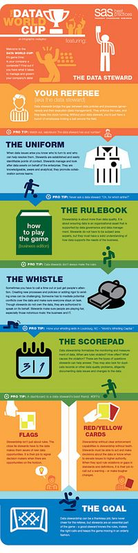 Data World Cup Infographic: Data Stewardship