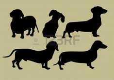 silhouette of dachshund Stock Vector