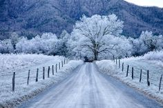 A perfect winter morning at Great Smoky Mountains National Park. This gorgeous shot was taken at the park's Sparks Lane in Cades Cove. Photo by Christopher Ewing. Great Smoky Mountains, Cades Cove, Winter Szenen, Winter Road, Winter Magic, Winter Time, 1st Day Of Winter, 2015 Winter, Winter Season