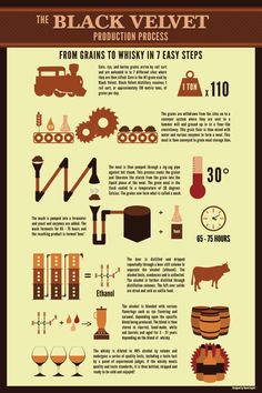 From Grains to Whisky in 7 Easy Steps Infographic: Black Velvet Distillery