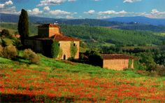 Postcard of the Week: Tuscany | The Well-Travelled Postcard