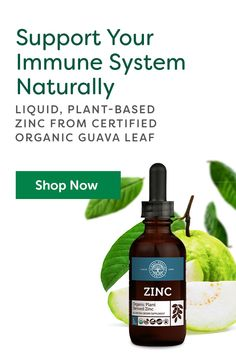 Global Healing's Zinc is an organic, plant-based, easy-to-absorb liquid zinc supplement for healthy immune function and overall body health. Guava Leaves, Organic Supplements, Nutritional Requirements, Organic Plants, Hormone Balancing, For Your Health, Immune System, Natural Health, Healthy Life