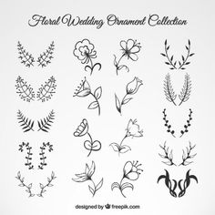 Wedding Floral Ornament Collection