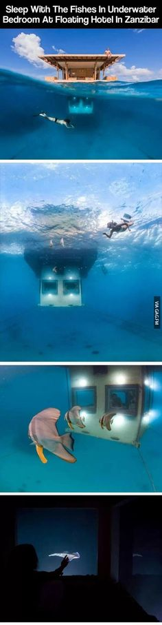 Sleep underwater with fishes