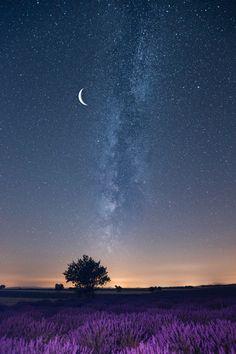 浪漫星空 - 七月的普罗旺斯薰衣草盛开,空气中弥漫着淡淡的清香,徜徉在花海沉醉于其中……夜空下我们躺在麦田里,观望银河升起,流星划破天际,弯弯的月牙悬挂在半空,我选择了二次曝光定格美丽……