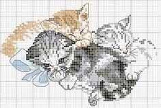 6b96a538113eaa59921b63f947a2f91f.jpg 600×404 pixels