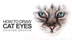 Color Pencil Drawing Tutorial How to Draw Cat Eyes Cat Drawing Tutorial, Pencil Drawing Tutorials, Pencil Drawings, Eye Drawings, Art Tutorials, Drawing Ideas, Animal Drawings, Drawing Lessons, Drawing Techniques