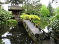 Tatton Park - Japanese Garden