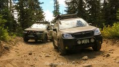 """POLLS OPEN! FOTM October 2016 - """"At Home in the Wild!"""" - Subaru Forester Owners Forum"""