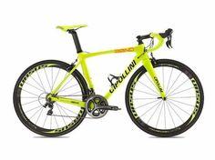 Bici Team Yellow Fluo 2014 (Ex Fantini vini Selle Italia)