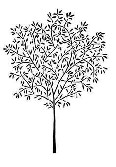Wall STENCIL Reusable 5 ft OLIVE TREE  Home by OliveLeafStencils, $79.95Cute, but  you could Free hand this with acrylic paint... Trees aren't perfect;)