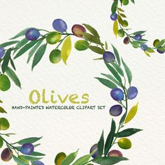 Olives Watercolor clip art hand drawn. Romantic wedding, light green, tender green branches, wedding invitation, wreath and arrangements. by SmallHouseBigPony on Etsy