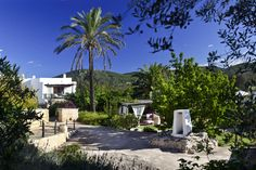 Hotel Ibiza Es Cucons. Hotels in Ibiza. Holidays and Tourism