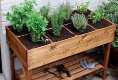 Inspiração para uma pequena horta, em bancada de madeira.