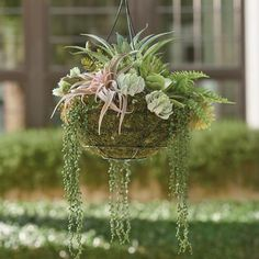 best snap shots faux hanging plants indoor board career : There are many ways to generate dwellings for our flowers! We all can display these individuals with space-saving hierarchy grow holds, remain these f. Hanging Succulents, Faux Succulents, Hanging Planters, Hanging Gardens, Hanging Basket, Basket Flower Arrangements, Succulent Arrangements, Floral Arrangement, Air Plants