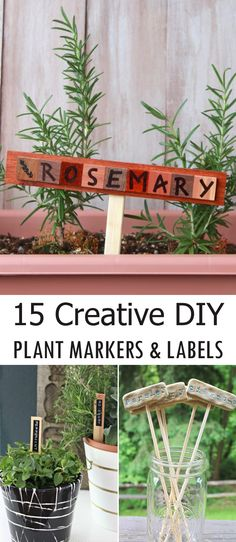15 Creative DIY Plant Markers And Labels #gardening
