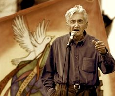 """""""When a social movement adopts the compromises of legislators, it has forgotten its role, which is to push and challenge the politicians, not to fall in meekly behind them."""" Howard Zinn"""