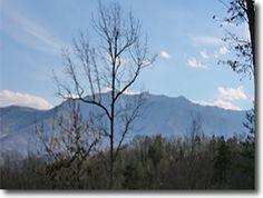 Hummingbird Hideaway in Gatlinburg, Tennessee: Winter Mnt.View