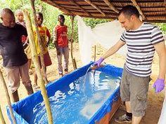 Espirulina: De comida de astronauta a suplemento da mandioca