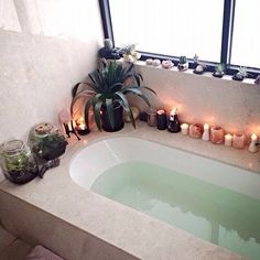 Candles+tub+plants+windowsill