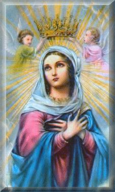 Each day of May there is a special flower dedicated to Our Lady which corresponds with a particular virtue. When you offer to Mary each day of May the acts of the designated virtue, you will have presented her with a most beautiful spiritual bouquet of flowers by her glorious feast on May 31st of the Queenship of Mary.