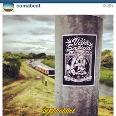 #w33daddict #StickersArt #StickersAddicts #CannabisStickers #Stickers #Cannabis #Marijuana #Hash #Hemp #Weed #Blunt #Joint #Amsterdam #CoffeShops #Reefer #Stoners #Smokers #Drugs #Pot #IWillMaryMary #iDabs #710 #420 #GorillaDabz #420Science #NugLife