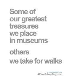 some of our greatest treasures - A Place to Love Dogs