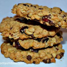 Vegan, Soyfree Salty Oat Cranberry Chocolate Chip Cookies  vegan, plantbased, earth balance, made just right