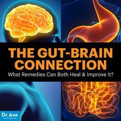 Gut-brain connection - Dr. Axe http://www.DrAxe.com #health #holistic #natural