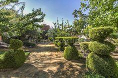 Fotos de Finca Villa Juan - Casa rural en Ribera del Fresno (Badajoz) http://www.escapadarural.com/casa-rural/badajoz/finca-villa-juan/fotos#p=56978a8796cf6