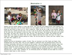 Related image Primary Education, Early Education, Childhood Education, Kids Education, Learning Stories Examples, Stories For Kids, Observation Examples, Science Area, 3 Year Old Activities