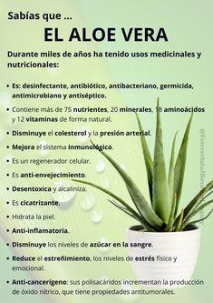 Forever Living Aloe Vera, Forever Aloe, Diy Beauty, Beauty Skin, Beauty Hacks, Herbalife, Forever Living Products, Tips Belleza, Facial Care