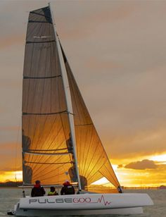 Pulse 600 Sailing at Sunset