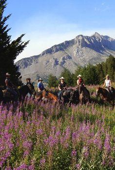 Triple J Ranch in August, Montana