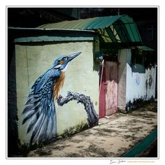 Kingfisher Wall Mural Kaohsiung Street Portrait, Some People Say, Photo Diary, Kingfisher, My Ride, World War Two, Sunny Days, Wall Murals, Something To Do
