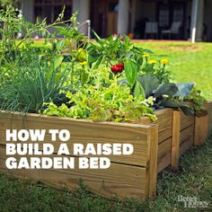 Use these easy instructions to build your own raised bed to make growing any plant easier #SchoolGardens #gardenbeds