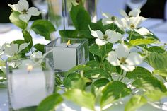 Delicate white-green table setting